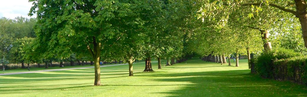 Windsor-And-Eton-Society-073